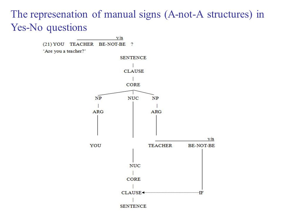 The represenation of manual signs (A-not-A structures) in Yes-No questions