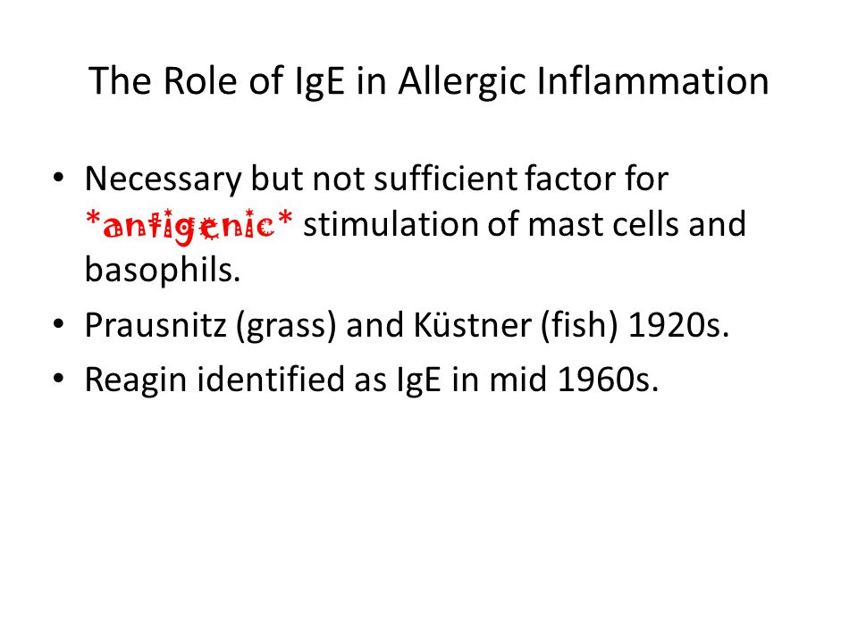The Role of IgE in Allergic Inflammation Necessary but not sufficient factor for * antigenic * stimulation of mast cells and basophils.