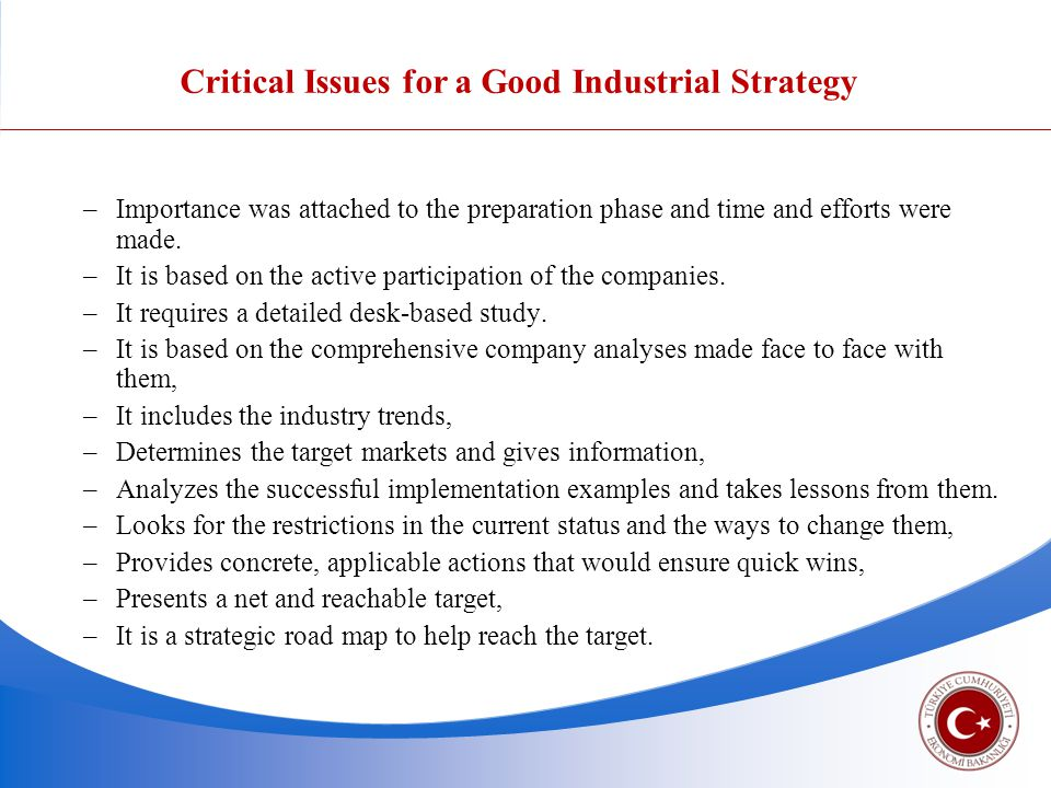 Critical Issues for a Good Industrial Strategy –Importance was attached to the preparation phase and time and efforts were made.