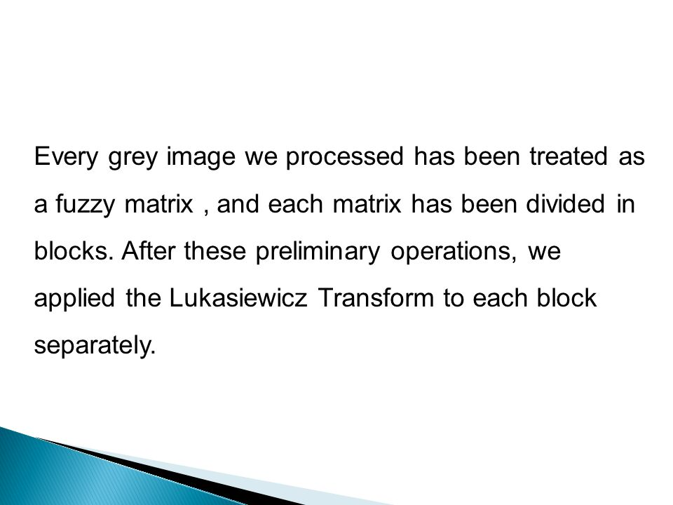 Every grey image we processed has been treated as a fuzzy matrix, and each matrix has been divided in blocks. After these preliminary operations, we a