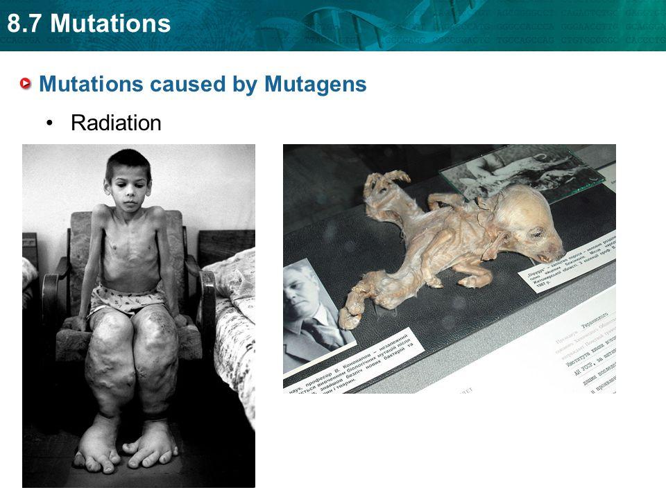 8.7 Mutations Mutations caused by Mutagens Radiation
