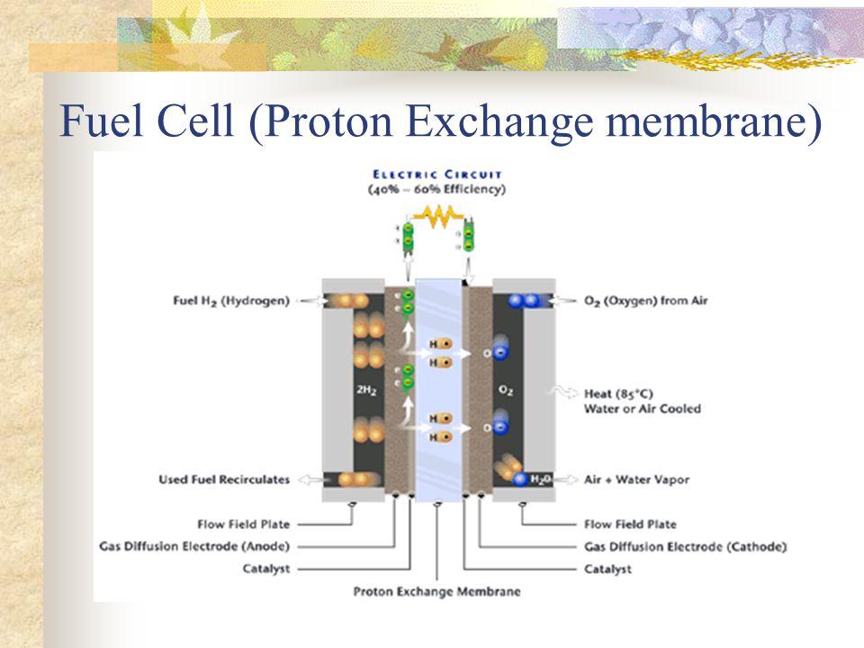 Fuel Cell (Proton Exchange membrane)