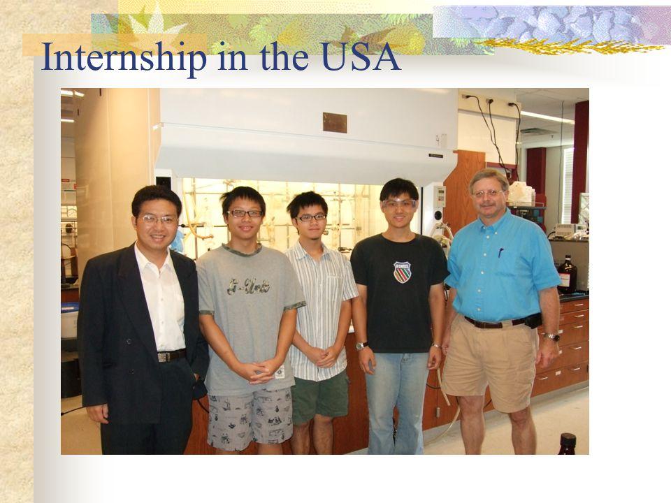Internship in the USA