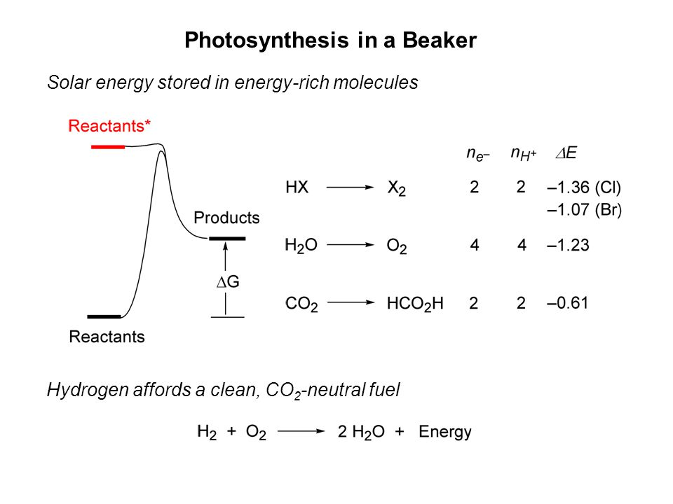 Photosynthesis in a Beaker Solar energy stored in energy-rich molecules Hydrogen affords a clean, CO 2 -neutral fuel