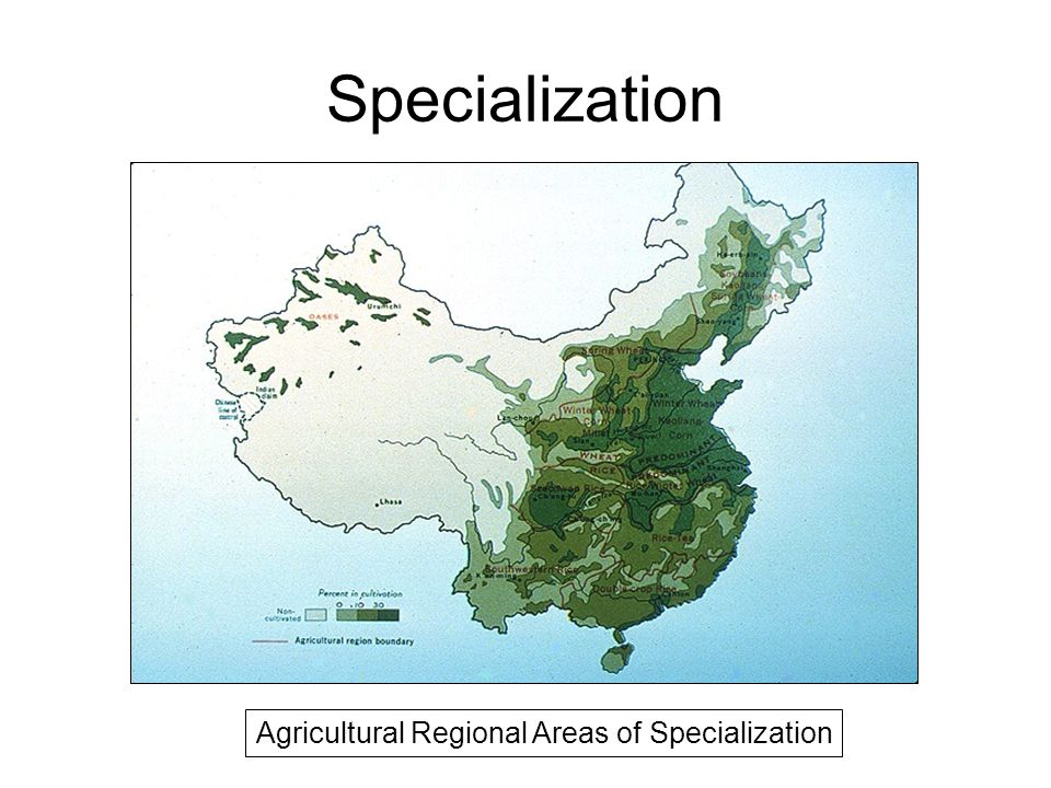 Specialization Agricultural Regional Areas of Specialization