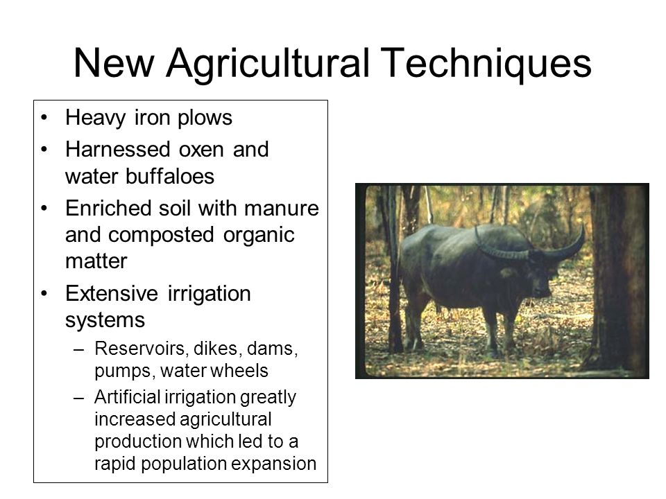 New Agricultural Techniques Heavy iron plows Harnessed oxen and water buffaloes Enriched soil with manure and composted organic matter Extensive irrigation systems –Reservoirs, dikes, dams, pumps, water wheels –Artificial irrigation greatly increased agricultural production which led to a rapid population expansion