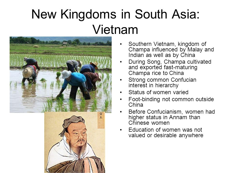 New Kingdoms in South Asia: Vietnam Southern Vietnam, kingdom of Champa influenced by Malay and Indian as well as by China During Song, Champa cultiva