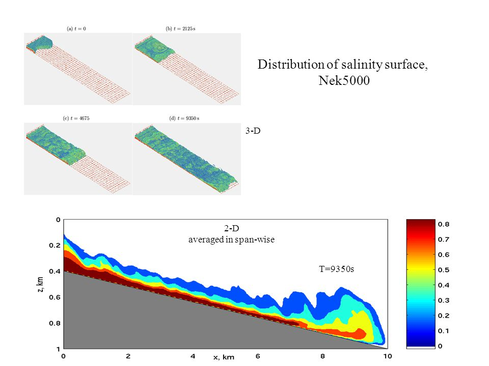Distribution of salinity surface, Nek5000 3-D 2-D averaged in span-wise T=9350s