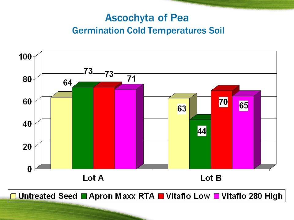 Ascochyta of Pea Germination Cold Temperatures Soil