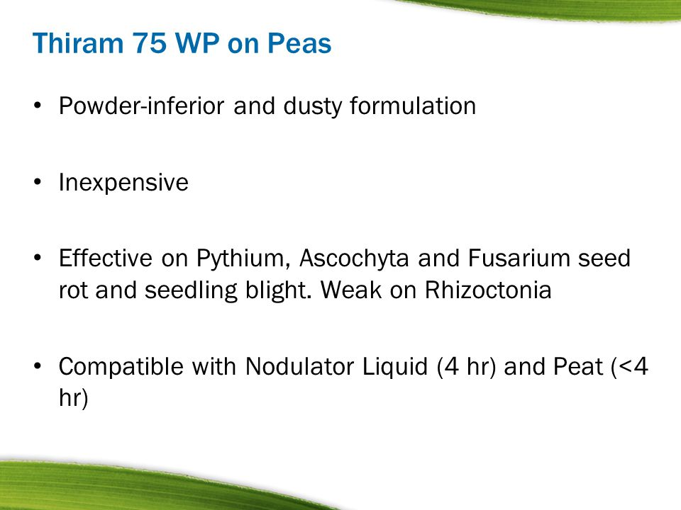 Thiram 75 WP on Peas Powder-inferior and dusty formulation Inexpensive Effective on Pythium, Ascochyta and Fusarium seed rot and seedling blight. Weak