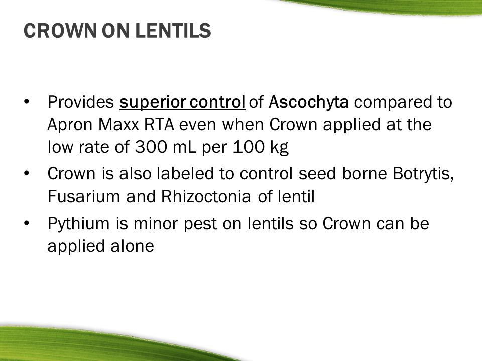 CROWN ON LENTILS Provides superior control of Ascochyta compared to Apron Maxx RTA even when Crown applied at the low rate of 300 mL per 100 kg Crown
