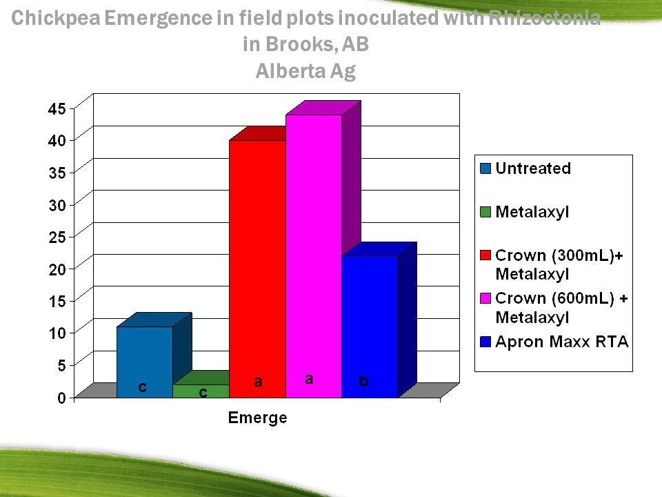 Chickpea Emergence in field plots inoculated with Rhizoctonia in Brooks, AB Alberta Ag a a b c c