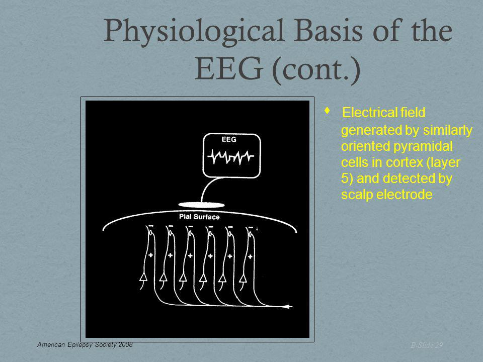Physiological Basis of the EEG (cont.) B-Slide 29  Electrical field generated by similarly oriented pyramidal cells in cortex (layer 5) and detected by scalp electrode American Epilepsy Society 2008