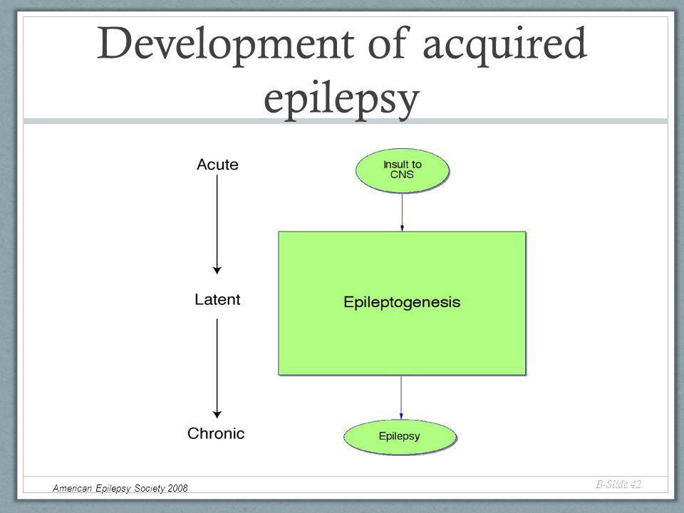 Development of acquired epilepsy B-Slide 42 American Epilepsy Society 2008