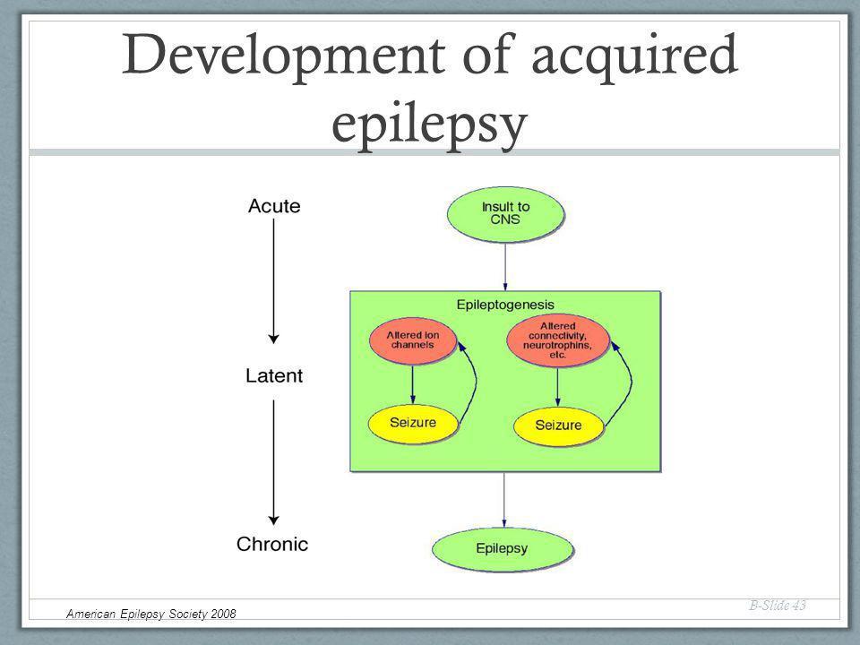 Development of acquired epilepsy B-Slide 43 American Epilepsy Society 2008