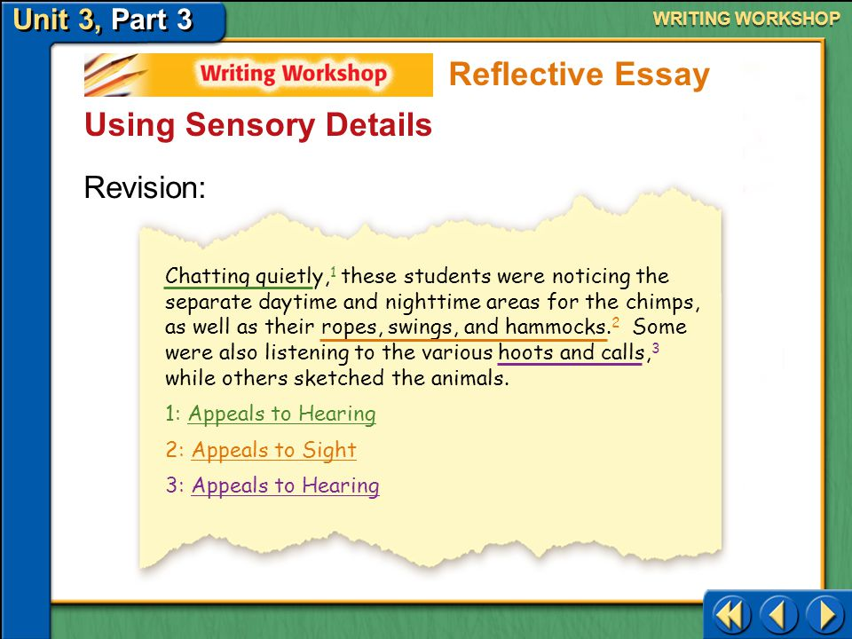 Unit 3, Part 3 Writing Workshop WRITING WORKSHOP Using Sensory Details Draft: These students were doing everything we had been told to do. Reflective