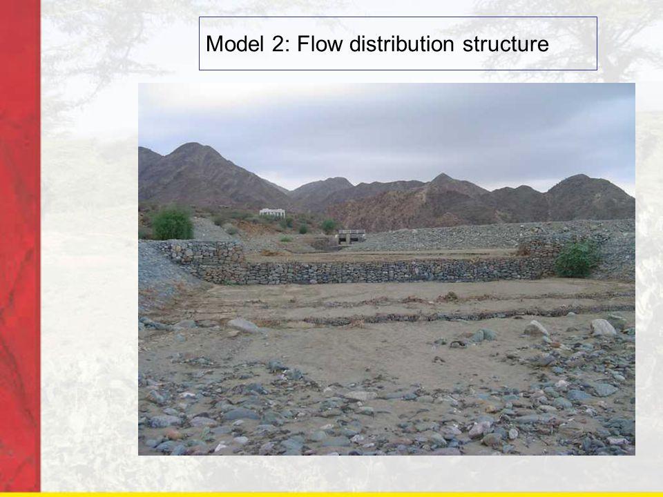 Model 2: Flow distribution structure