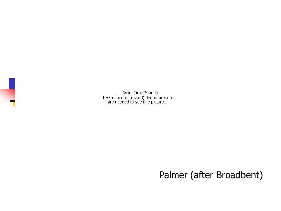 Palmer (after Broadbent)