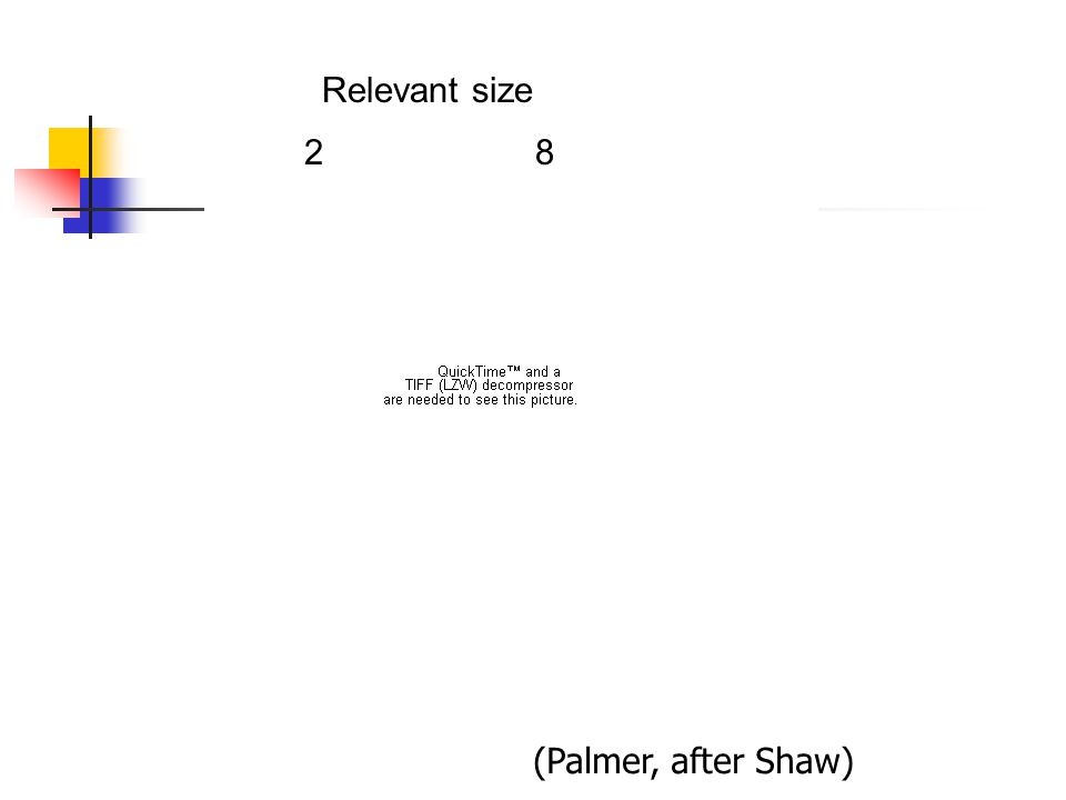 interval 750 ms test 100 ms cue 250 ms Relevant size 28 (Palmer, after Shaw)