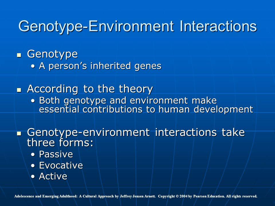 Genotype Genotype A person's inherited genesA person's inherited genes According to the theory According to the theory Both genotype and environment m