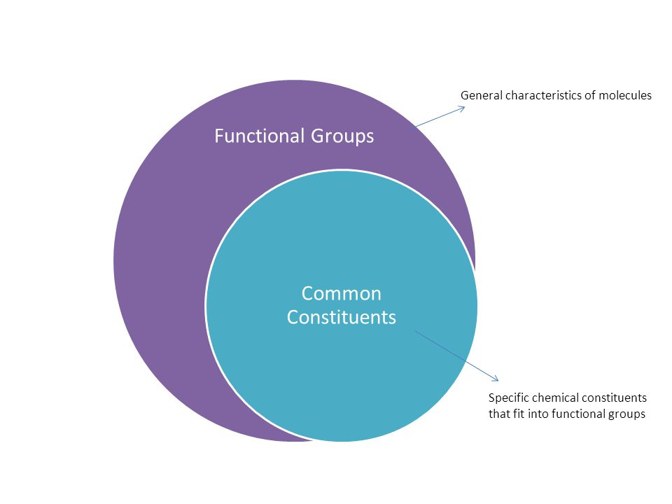 Functional Groups Common Constituents General characteristics of molecules Specific chemical constituents that fit into functional groups