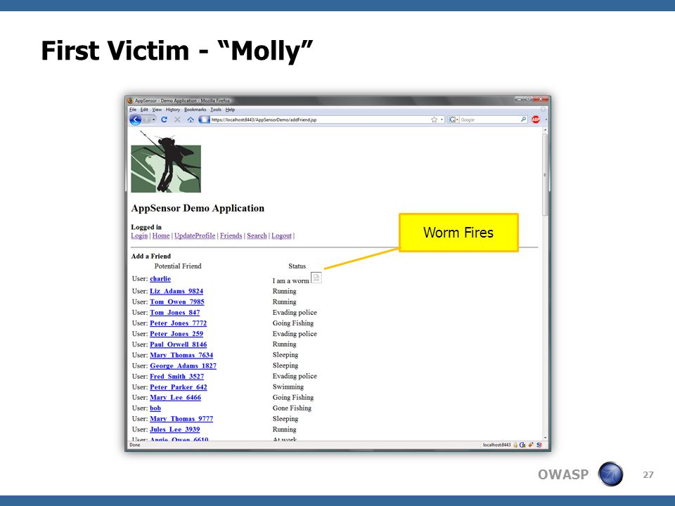 OWASP First Victim - Molly 27 Worm Fires