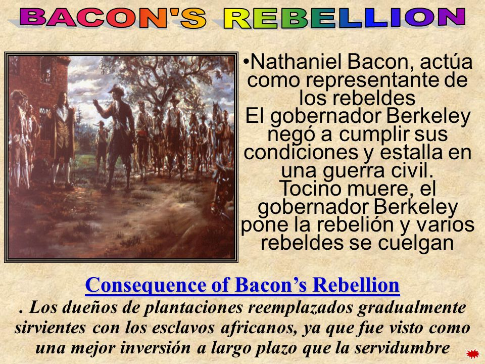Nathaniel Bacon, actúa como representante de los rebeldes El gobernador Berkeley negó a cumplir sus condiciones y estalla en una guerra civil. Tocino