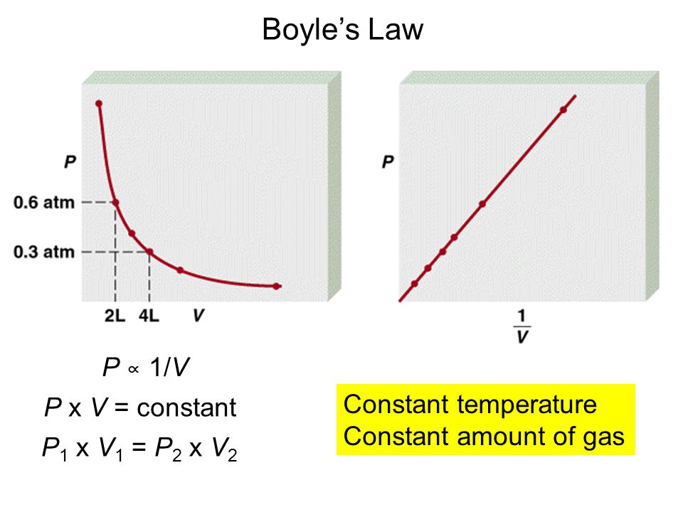 P ∝ 1/V P x V = constant P 1 x V 1 = P 2 x V 2 Boyle's Law Constant temperature Constant amount of gas