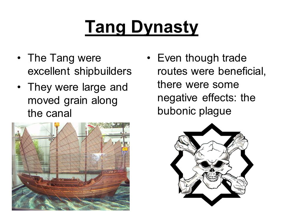 Tang Dynasty The Tang were excellent shipbuilders They were large and moved grain along the canal Even though trade routes were beneficial, there were