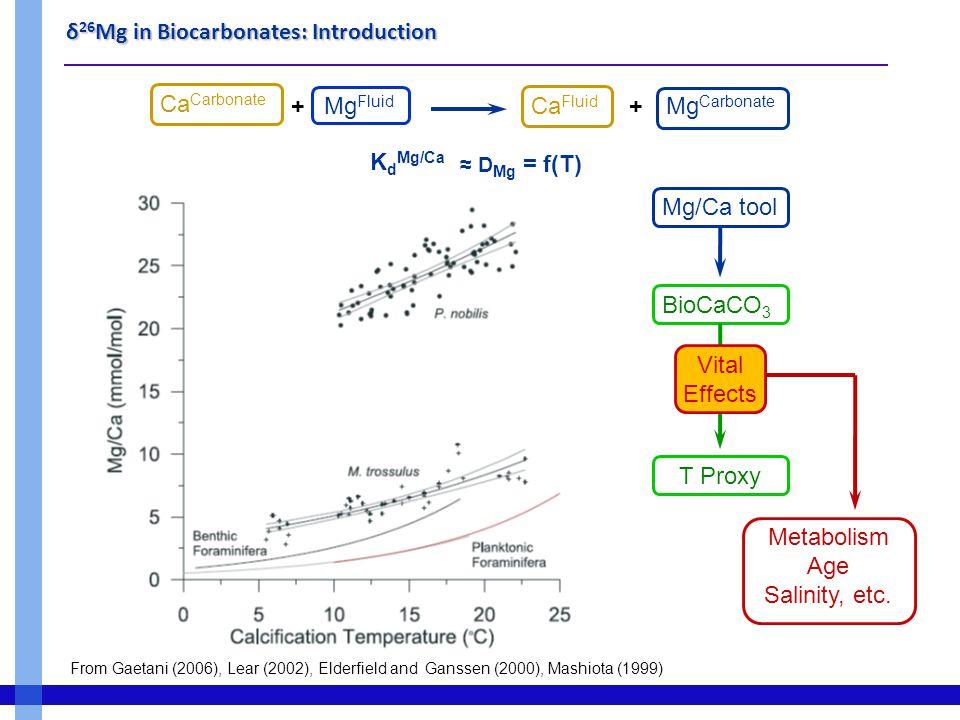 δ 26 Mg in Biocarbonates : Starfish  Low interspecies variability  Moderate biological control