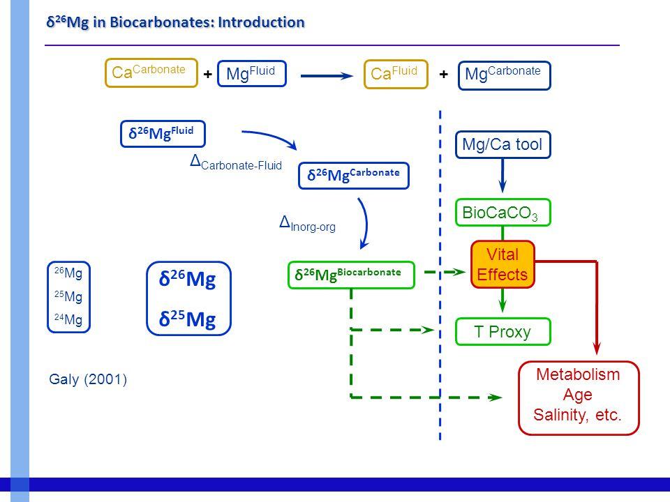 δ 26 Mg in Biocarbonates: Methodology Sample Purification  Cationic exhange chromatography (Chang, 2003)  Full Mg recovery  Clean techniques