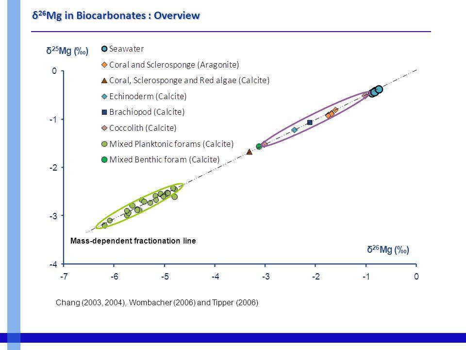 δ 26 Mg in Biocarbonates: Samples Echinoderms  Starfish  Sea Urchin Morphology Culture Exp (T, S) Bivalves  Clams (Ruditapes Ph.)  Salinity Gradient (2 sites) Auray River  Shell  Internal fluids  Soft tissus