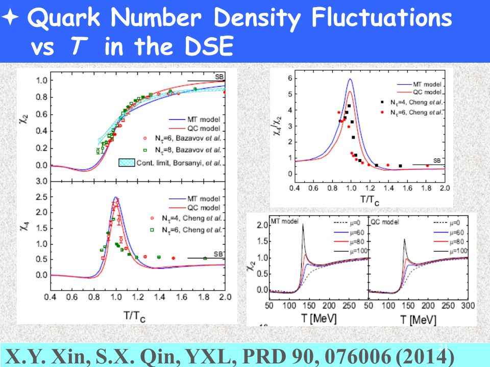  Quark Number Density Fluctuations vs T in the DSE X.Y.