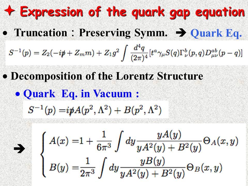  Expression of the quark gap equation  Truncation : Preserving Symm.