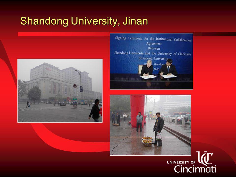 Shandong University, Jinan