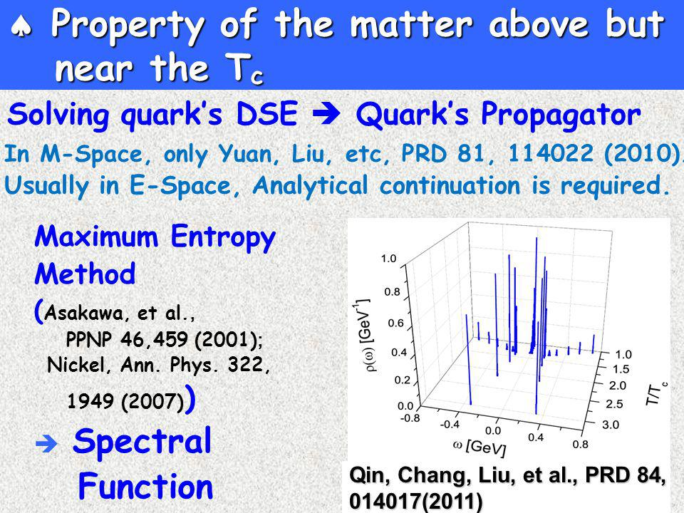 Solving quark's DSE  Quark's Propagator  Property of the matter above but near the T c Maximum Entropy Method ( Asakawa, et al., PPNP 46,459 (2001) ; Nickel, Ann.
