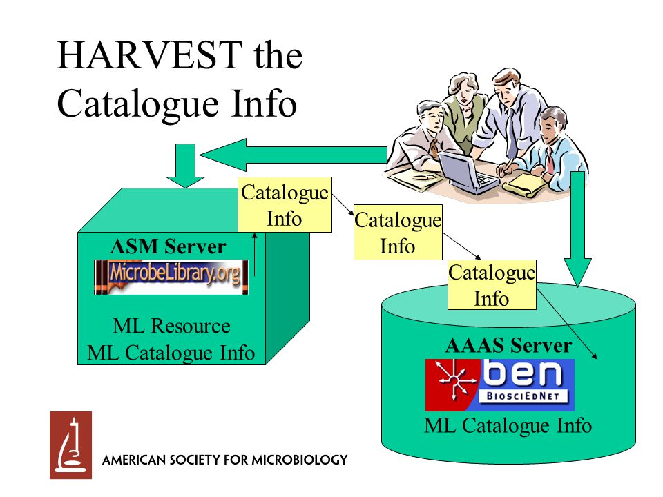 HARVEST the Catalogue Info ASM Server ML Resource ML Catalogue Info AAAS Server ML Catalogue Info Catalogue Info Catalogue Info Catalogue Info