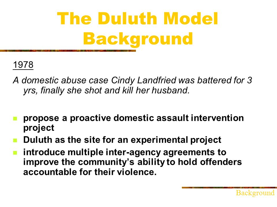 The Duluth Model Background March 2, 1981 The priority is always the victims safety.