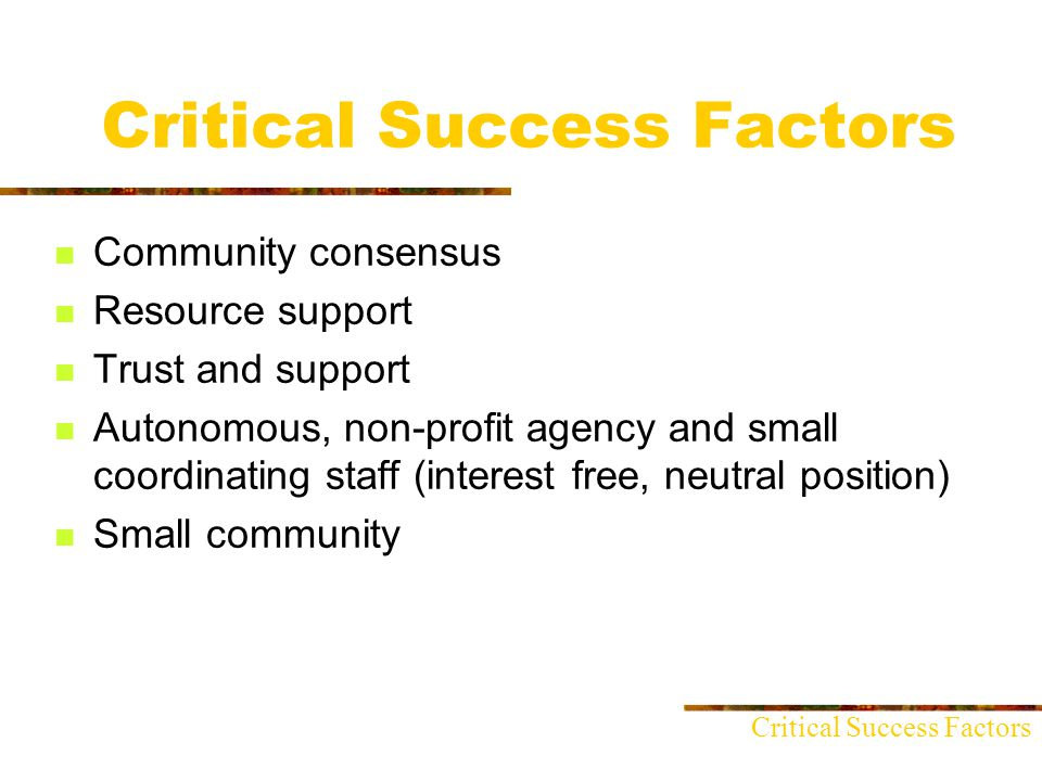 Critical Success Factors Community consensus Resource support Trust and support Autonomous, non-profit agency and small coordinating staff (interest free, neutral position) Small community Critical Success Factors