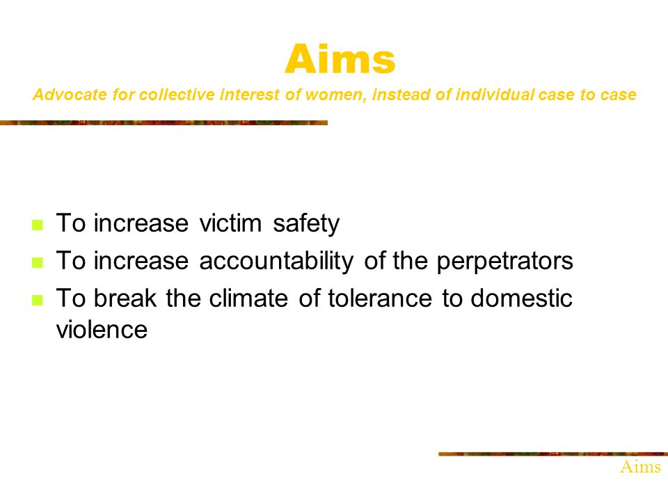 Aims Advocate for collective interest of women, instead of individual case to case To increase victim safety To increase accountability of the perpetrators To break the climate of tolerance to domestic violence Aims