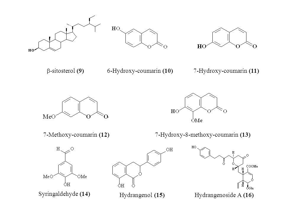  - sitosterol (9) 6-Hydroxy-coumarin (10)7-Hydroxy-coumarin (11) 7-Methoxy-coumarin (12)7-Hydroxy-8-methoxy-coumarin (13) Syringaldehyde (14) Hydrangenol (15)Hydrangenoside A (16)