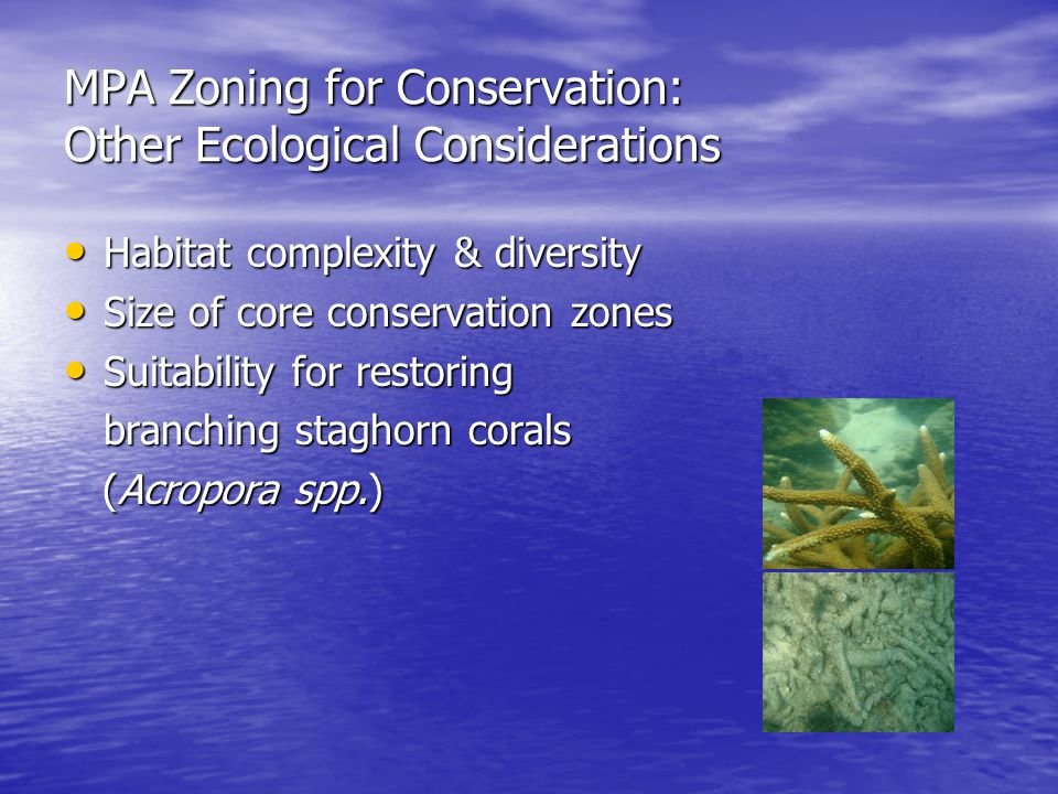 MPA Zoning for Conservation: Other Ecological Considerations Habitat complexity & diversity Habitat complexity & diversity Size of core conservation zones Size of core conservation zones Suitability for restoring Suitability for restoring branching staghorn corals (Acropora spp.) (Acropora spp.)
