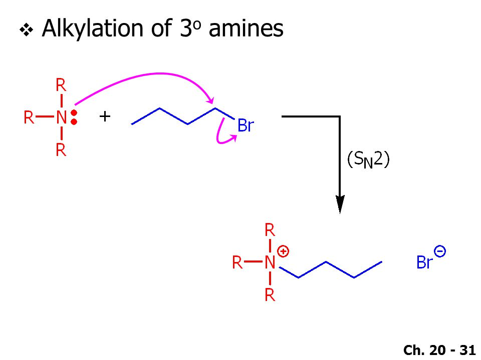 Ch. 20 - 31  Alkylation of 3 o amines