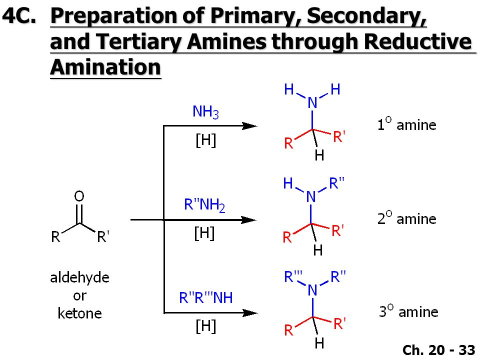 Ch. 20 - 33 4C.Preparation of Primary, Secondary, and Tertiary Amines through Reductive Amination