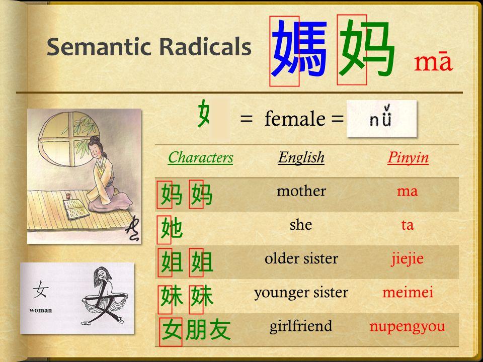 Semantic Radicals 媽 CharactersEnglishPinyin 妈 妈妈 妈 motherma 她 sheta 姐 姐姐 姐 older sisterjiejie 妹 妹妹 妹 younger sistermeimei 女朋友 girlfriendnupengyou 妈 ma
