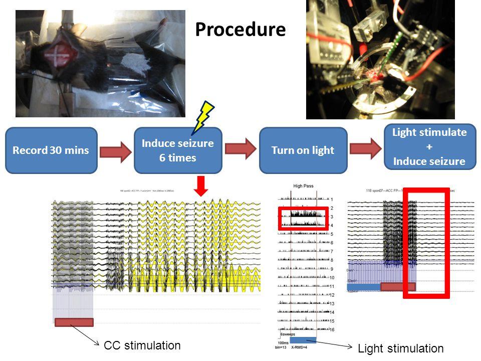 Procedure Record 30 mins Light stimulate + Induce seizure Turn on light Induce seizure 6 times Light stimulation CC stimulation