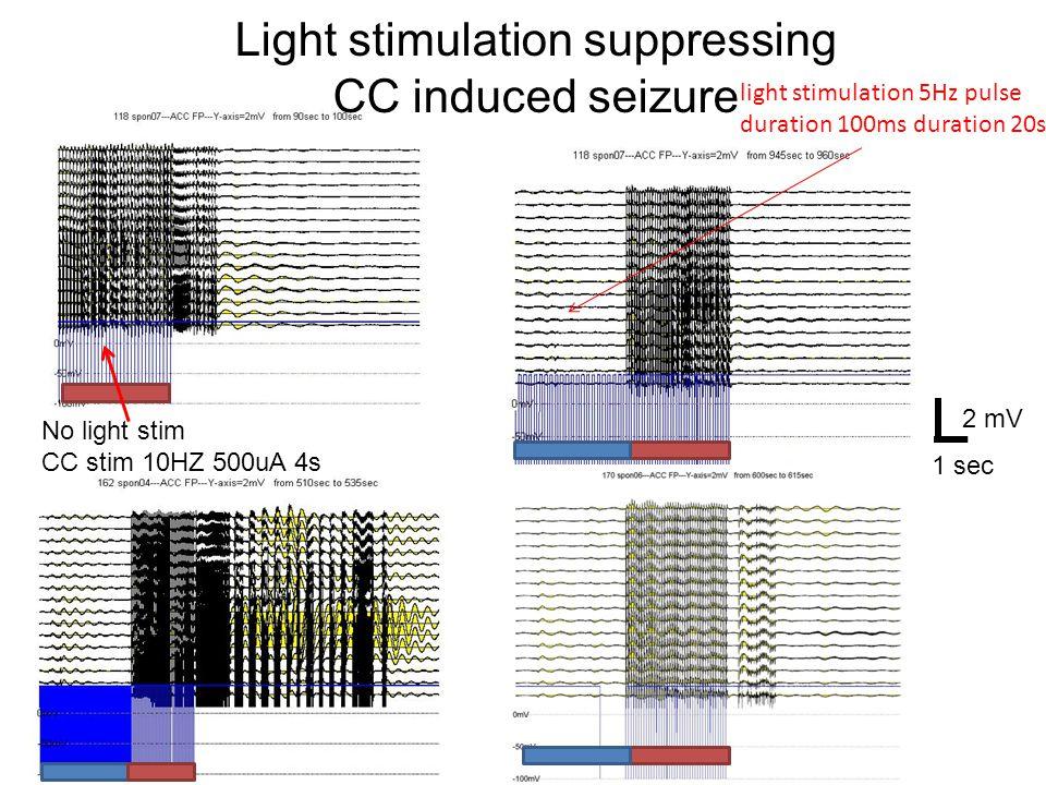 light stimulation 5Hz pulse duration 100ms duration 20s No light stim CC stim 10HZ 500uA 4s Light stimulation suppressing CC induced seizure 2 mV 1 sec