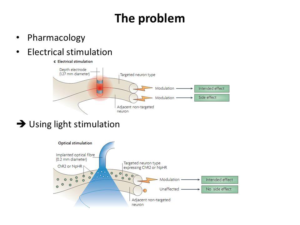 The problem Pharmacology Electrical stimulation  Using light stimulation