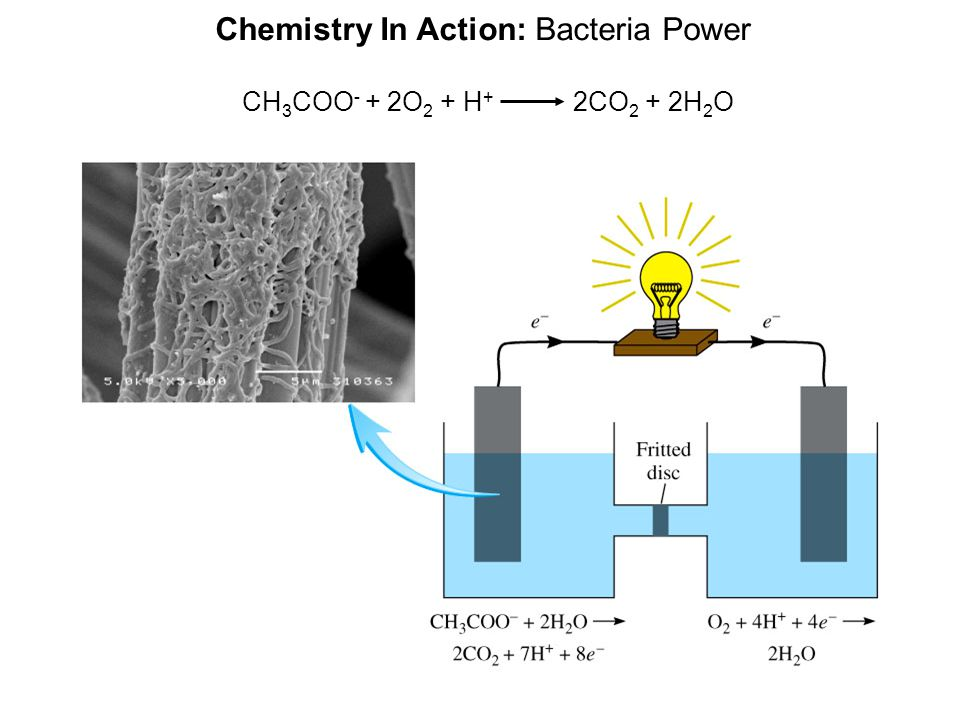 Chemistry In Action: Bacteria Power CH 3 COO - + 2O 2 + H + 2CO 2 + 2H 2 O