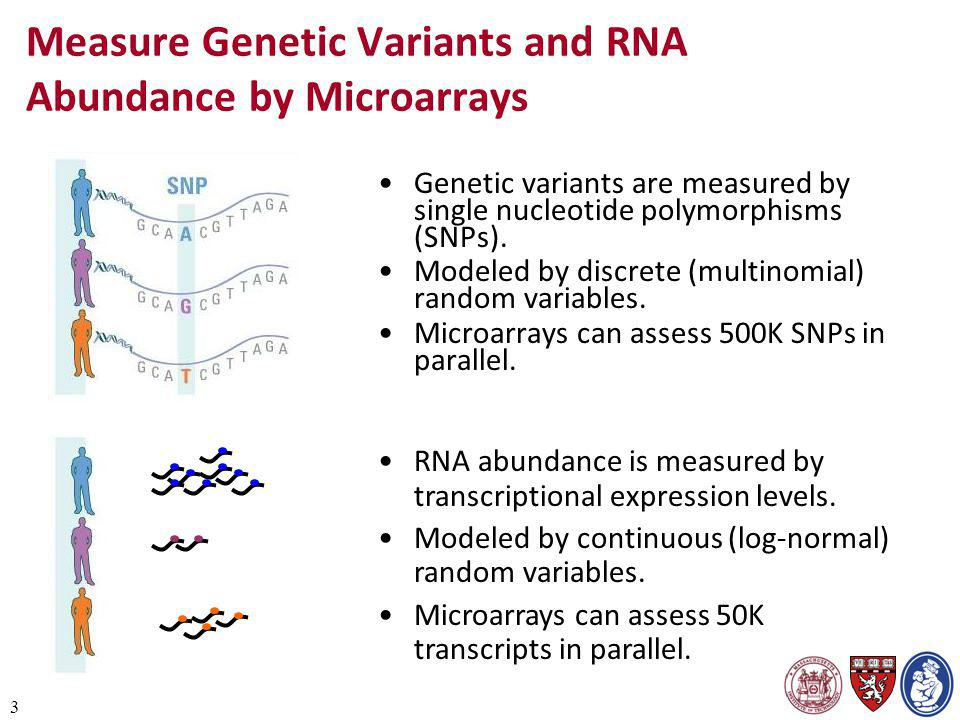 3 Measure Genetic Variants and RNA Abundance by Microarrays Genetic variants are measured by single nucleotide polymorphisms (SNPs). Modeled by discre